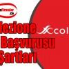 Collezione Bayilik Başvurusu ve Şartları