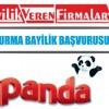 Panda Dondurma Bayilik Başvurusu ve Şartları