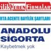Anadolu Sigorta Acente Bayilik Şartları ve Başvurusu