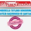 Dondurella Tayland Dondurması Bayilik Başvurusu ve Şartları