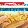 Halk Ekmek Bayilik Başvurusu ve Şartları