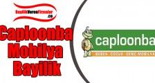 Caploonba Mobilya Bayilik Başvurusu ve Şartları