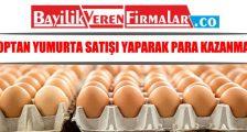 Toptan Yumurta Satışı Yaparak Para Kazanmak