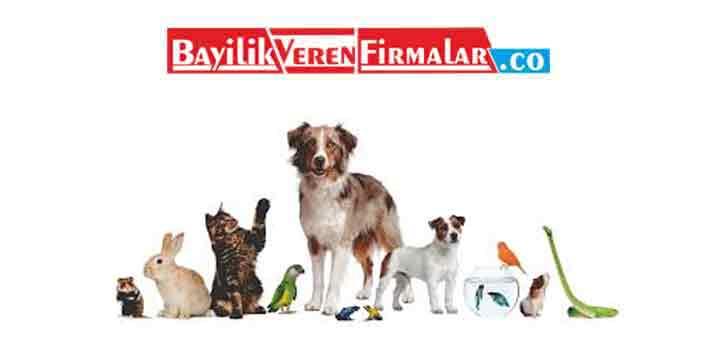 hayvan bakıcılığı